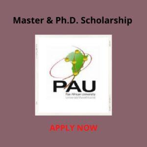 Pan Africa Unversity Scholarship 2021/2021